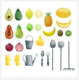 Ensemble de fruits tirés par la main d'aquarelle illustration libre de droits
