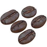 Ensemble de grains de café, d'isolement sur le fond blanc Photographie stock libre de droits