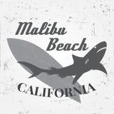 Ensemble de graphiques et d'emblème surfants de vintage pour le web design ou la copie Surfer, conception de logo de style de pla Photos libres de droits