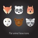 Ensemble de gros visages animaux Image stock