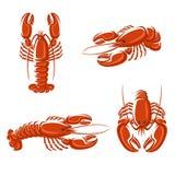 Ensemble de homard. Vecteur Photos libres de droits