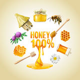 Ensemble de Honey Icons Photographie stock