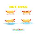 Ensemble de hot-dog Photo libre de droits