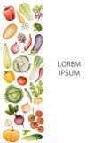 Ensemble de légumes d'aquarelle Image stock