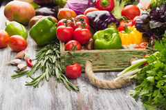 Ensemble de légumes dans le plateau Photo libre de droits