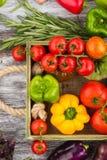 Ensemble de légumes dans le plateau Images stock