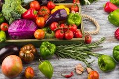 Ensemble de légumes dans le plateau Image stock