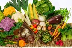 Ensemble de légumes frais Photographie stock