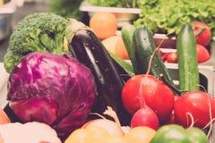 Ensemble de légumes frais et d'herbes Foyer sélectif Département peu profond photo libre de droits