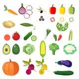 Ensemble de légumes sains frais d'isolement Illustration Libre de Droits