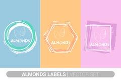 Ensemble de label coloré d'amandes Formes organiques crues d'insigne d'écrous d'amande ?tiquettes cr?atives d'?crou illustration libre de droits