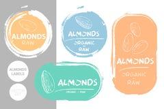 Ensemble de label color? d'amandes Formes organiques crues d'insigne d'?crous d'amande ?tiquettes cr?atives d'?crou illustration de vecteur