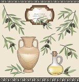 Ensemble de label d'huile d'olive. Ingrédient de nourriture floral de nature. Rétro papier peint démodé grec Image stock