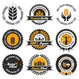 Ensemble de label organique de blé Photographie stock libre de droits