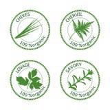 Ensemble de labels d'herbes 100 organiques Illustration de vecteur Photographie stock libre de droits