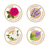 Ensemble de labels d'huiles essentielles Rose, sauge, lavande, jasmin Images stock