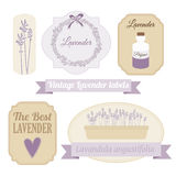 Ensemble de labels de vintage avec la lavande,  Photo stock