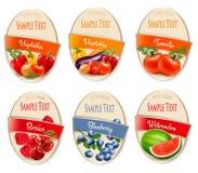 Ensemble de labels des baies et des légumes illustration libre de droits