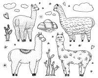 Ensemble de lamas mignons d'alpaga ou de guanaco sauvage sur le fond du cactus et de la montagne Animaux de sourire drôles au Pér illustration libre de droits