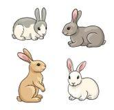 Ensemble de lapins - illustration de vecteur Photo libre de droits