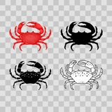 Ensemble de ligne à plat rouge, noire, mince crabe blanc d'isolement sur le fond transparent - dirigez l'illustration Animal d'ea Photos libres de droits