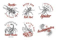 Ensemble de logos d'insectes Le vintage choie des labels pour le studio de barre ou de tatouage Araignée Ant Mantis Bee de scorpi illustration stock