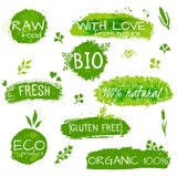 Ensemble de logos, timbres, insignes, labels pour les produits naturels d'eco, fermes, organiques Éléments floraux et texture sal Photo stock