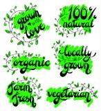 Ensemble de logos, timbres, insignes, labels pour naturel, eco, bio produits, fermes, organiques produit naturel de 100% Éléments illustration de vecteur