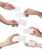 Ensemble de mains retenant les cartes de visite professionnelle de visite vides sur le blanc Images libres de droits