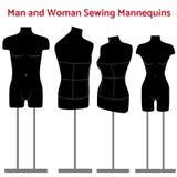 Ensemble de mannequin de corps de femelle et d'homme illustration libre de droits