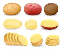 Ensemble de maquette frit par praties de pomme de terre, style réaliste illustration libre de droits