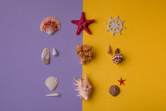 Ensemble de marine de coquillages Images stock