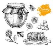 Ensemble de miel de vecteur Illustration tirée par la main de vintage illustration libre de droits
