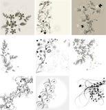 Ensemble de milieux floraux illustration stock