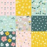 Ensemble de modèle floral, fleurs de ressort Image stock