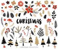 Ensemble de Noël d'usines avec des fleurs et des arbres de Noël Photographie stock
