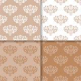 Ensemble de papier peint de modèles sans couture beiges bruns avec les ornements floraux Image stock