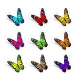 Ensemble de papillons colorés réalistes d'isolement pour le ressort Photos stock