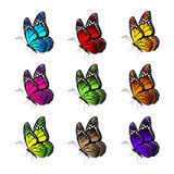 Ensemble de papillons colorés réalistes d'isolement pour le ressort Photo libre de droits