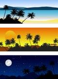 Ensemble de paysages de vecteur avec des palmiers illustration stock