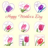 Ensemble de petites cartes postales avec des tulipes Fleur tirée par la main Images stock