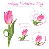 Ensemble de petites cartes postales avec les tulipes tirées par la main Éléments de conception graphique Photos libres de droits