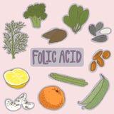 Ensemble de plan sain de nourritures d'acide folique Concept médical de soins de santé Illustration plate de conception de vecteu Photo libre de droits