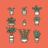 Ensemble de plantes d'intérieur dans des pots Image stock