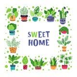 Ensemble de plantes d'intérieur de vecteur illustration stock