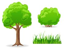 Ensemble de plantes vertes de dessin animé. Arbre, buisson, herbe. Photo stock