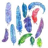 Ensemble de plumes d'aquarelle Image stock