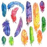 Ensemble de plumes d'aquarelle Photos libres de droits