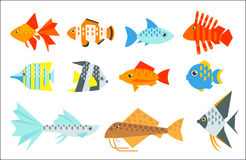 Ensemble de poissons d'aquarium Images stock