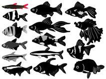Ensemble de poissons de Verseau Illustration de Vecteur